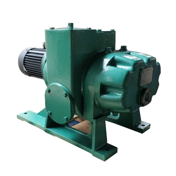 ZJP-150 Roots vacuum pump