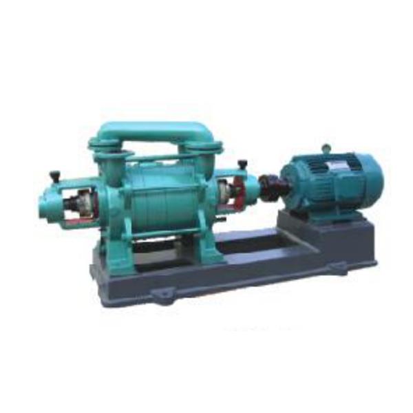 2SK-3 Water ring vacuum pump