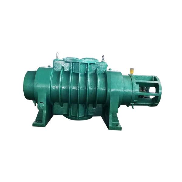 ZJP-2500 Roots vacuum pump